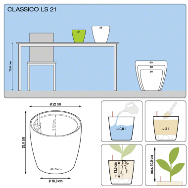 Мирт в Classico LS Premium 21 — Luxury Plants