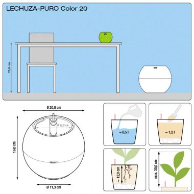 Мирт в Lechuza Puro Color 20 — Luxury Plants